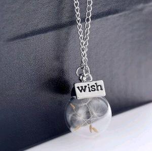 Round glass terrarium dandelion seed necklace
